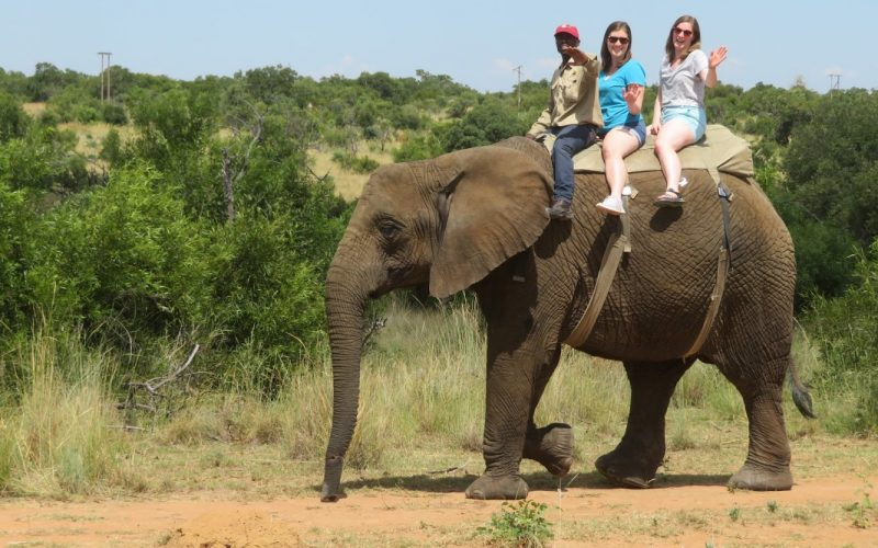 Laura and friend riding an elephant