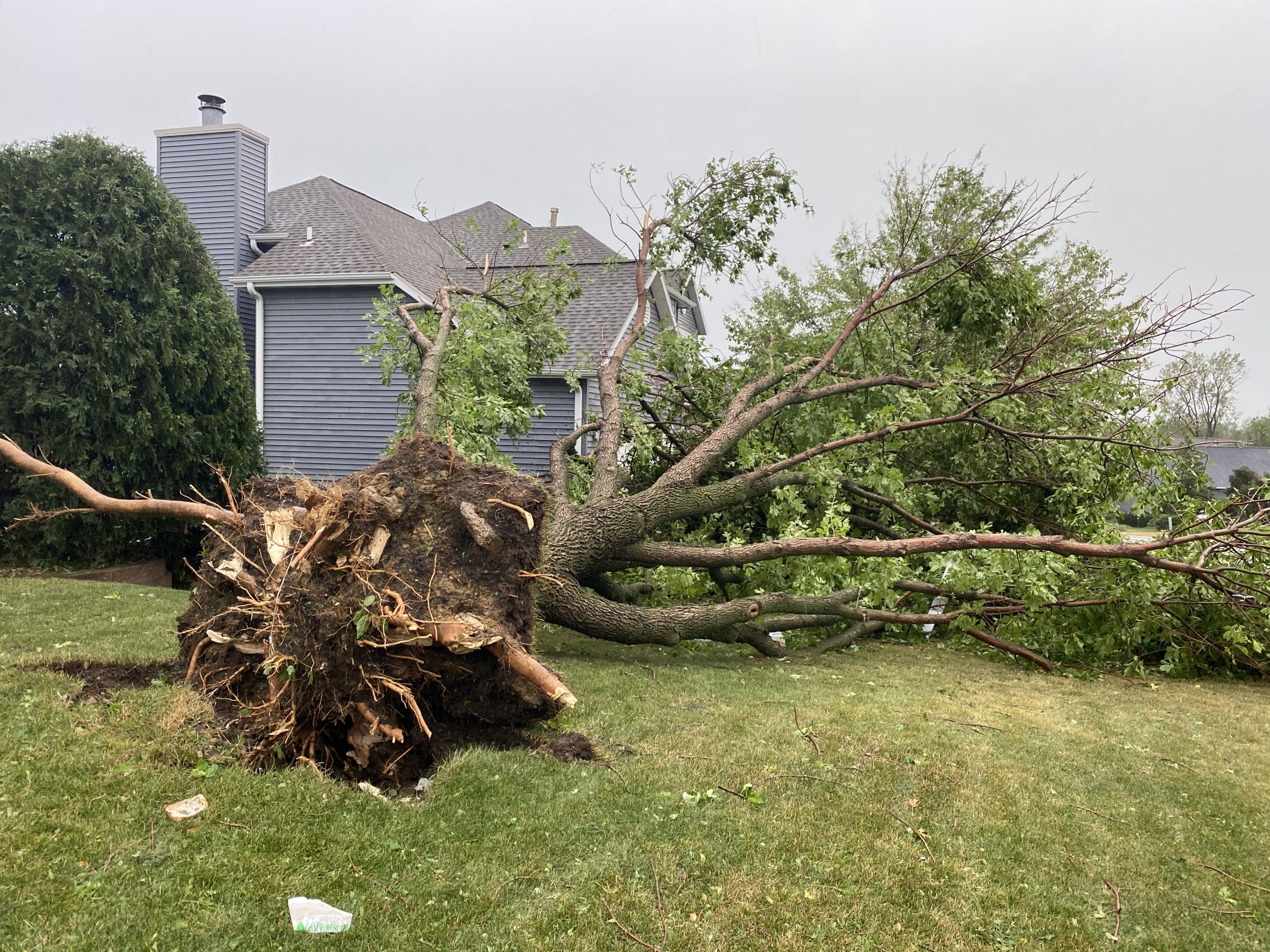 Cedar Rapids - 2020 Storm Damage